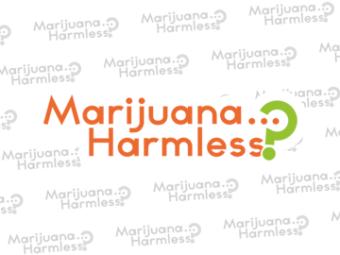 Marijuana… Harmless?