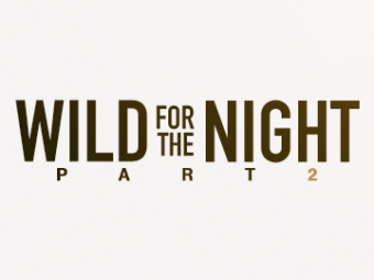 Wild For The Night P2