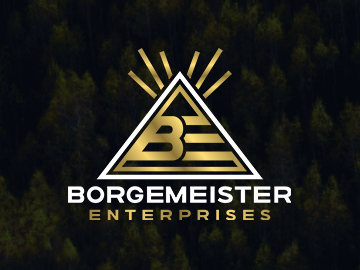 Borgemeister Enterprises